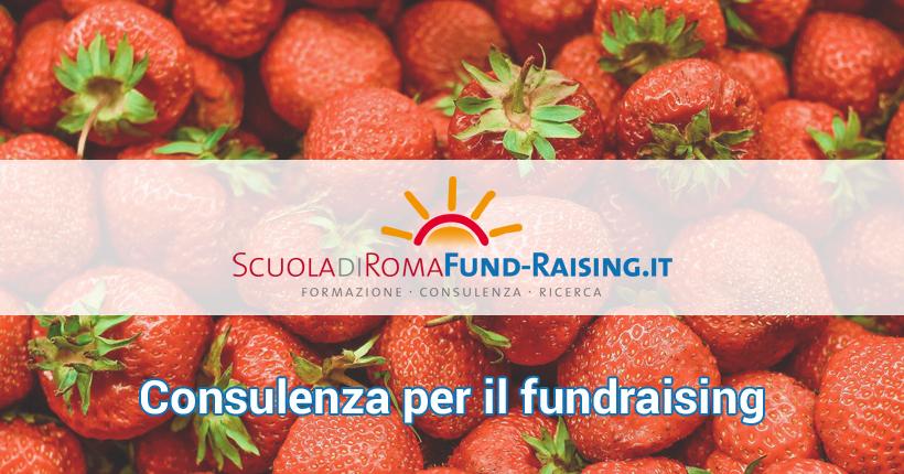 Consulenza per il fundraising: notizie di settembre 2017