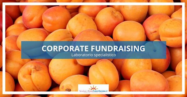 Corsi di fundraising: il nuovo calendario